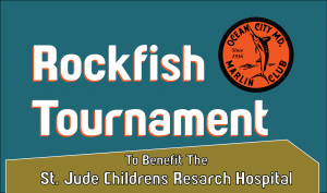 marlin club rockfish tournament benefit for st. jude hospital